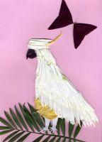 parrot_M